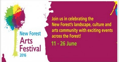 New Forest Arts Festival