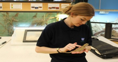 RSPCA Trainee with Reptile