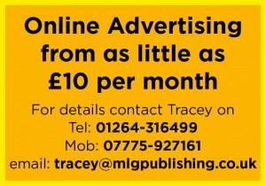 MLG Online Advertising advert