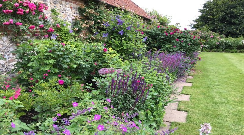 rsz_mixed_herbaceous_border__-_1