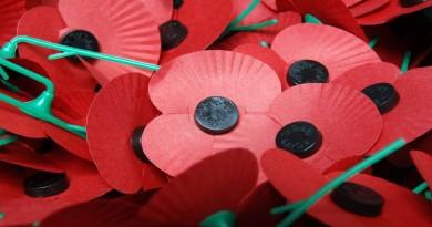 Royal British Legion Poppy Appeal #poppypound