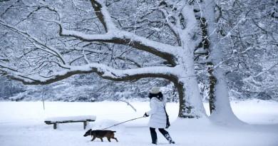 Dog walker in the snow, credit National Trust, John Millar