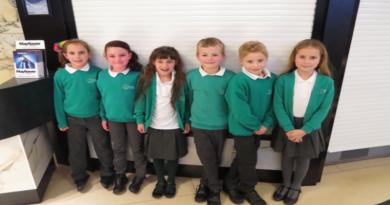 Wellow School Primary Reporters