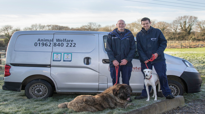 Gold RSPCA Awards for Winchester's Animal Welfare