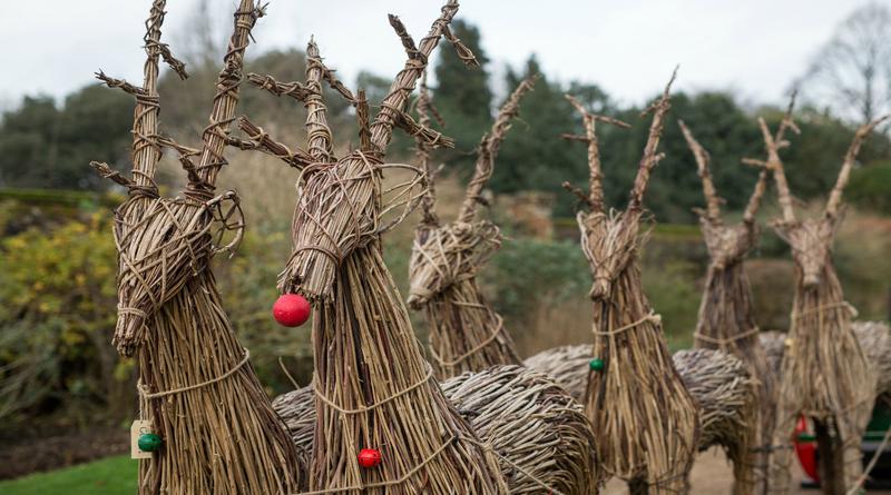 Mottisfont - visiting reindeer, National Trust Images, Rob Stothard