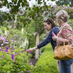 Visitors in the walled rose garden at Mottisfont, Hampshire