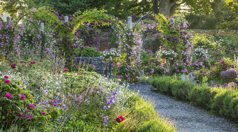 The rose garden in June at Mottisfont