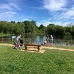 Bishop's Waltham North Pond Conservation Volunteers