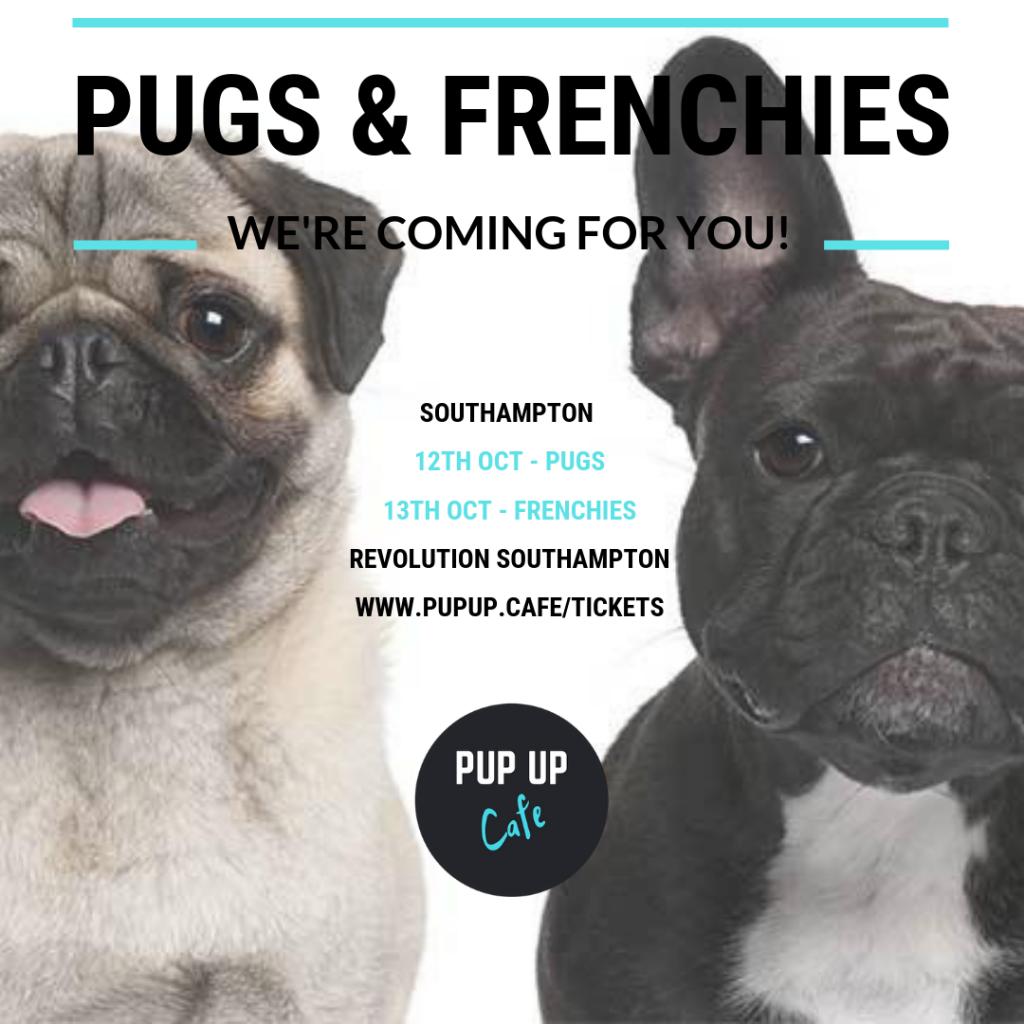 Pop Up Frenchie/Pug Cafe Southampton