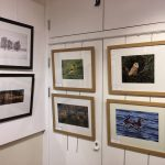 New Forest Camera Club Exhibition 1