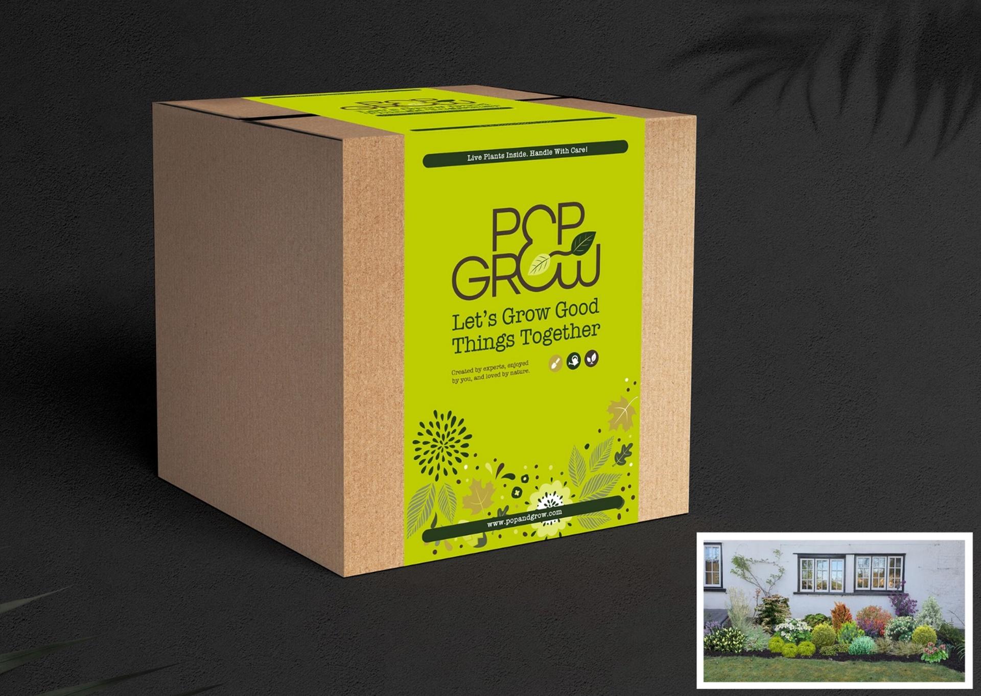 Pop and Grow garden in a box