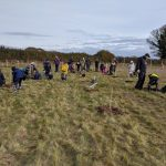 Andover Trees United's 'Tree Planting Fortnight'