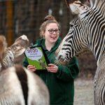 Keeper Zoe Newnham with zebra