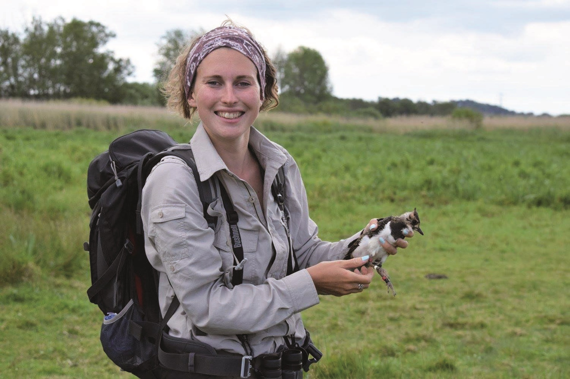 Lizzie Grayshon has been monitoring lapwing in the Avon Valley